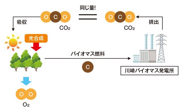 川崎バイオマス発電事業 | 住友共同電力